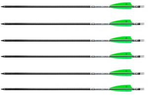 TenPoint EVO-X Center Punch Carbon Arrows,