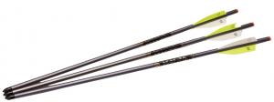 Tenpoint XX75 Magnum 20-Inch 2219 Easton Aluminum Crossbow Arrows