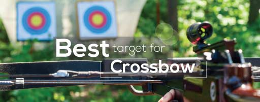 best target for crossbow