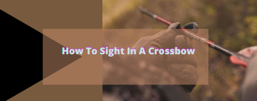 How to sight in a crossbow